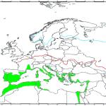 Zone di produzione di olio di oliva